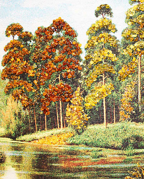 The Picture Is From Natural Baltic Amber Autumn Forest